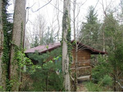 Elizabethton Single Family Home For Sale: 210 Short Coal Chute