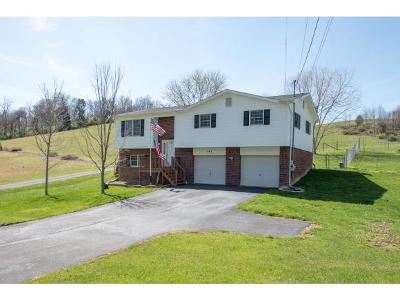 Bristol Single Family Home For Sale: 182 Wallace Pike