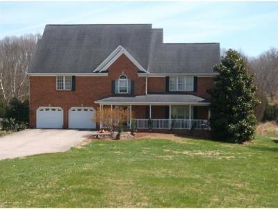 Blountville Single Family Home For Sale: 217 Sandy Pointe Drive