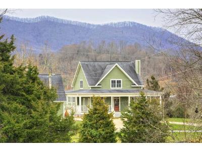 Jonesborough Single Family Home For Sale: 4372 Greenwood Drive