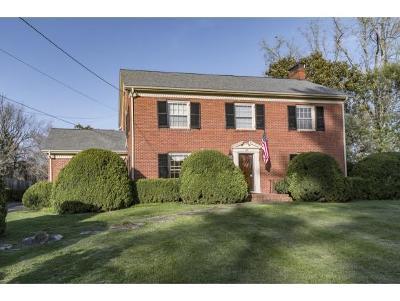 Johnson City Single Family Home For Sale: 118 Ridgemont