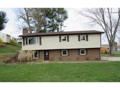 Bristol VA Single Family Home For Sale: $106,900