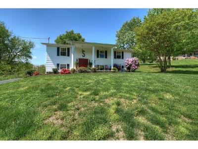 Elizabethton Single Family Home For Sale: 288 Hart