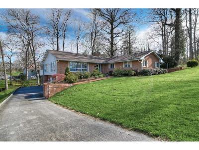 Johnson City Single Family Home For Sale: 106 Oak Lane