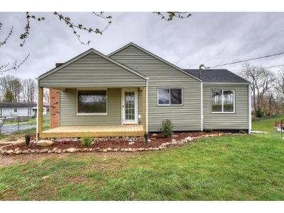 Johnson City Single Family Home For Sale: 398 Greenlee Road