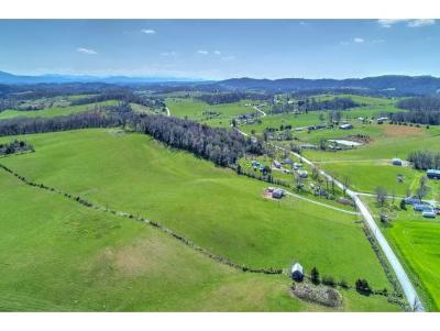 Greene County Residential Lots & Land For Sale: TBD Old Stage Road
