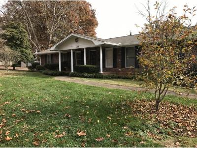 Johnson City Single Family Home For Sale: 1103 Skyline Drive