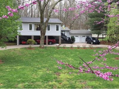 Piney Flats Single Family Home For Sale: 509 Baywood Drive