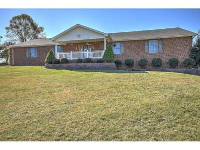 Blountville Single Family Home For Sale: 283 Barger Hollow
