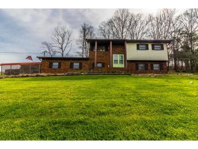 Elizabethton Single Family Home For Sale: 293 Cash Hollow Road