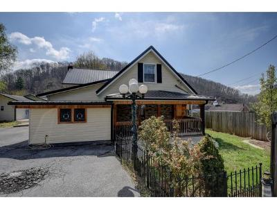Elizabethton Single Family Home For Sale: 102 Borderview Ave