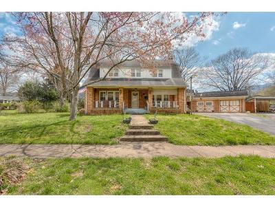 Erwin Single Family Home For Sale: 640 Holston Place