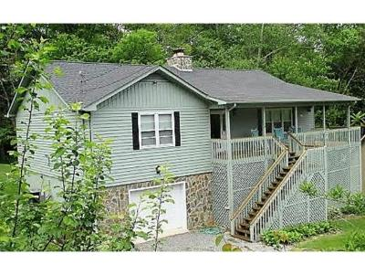Roan Mountain Single Family Home For Sale: 124 Orchard Meadows