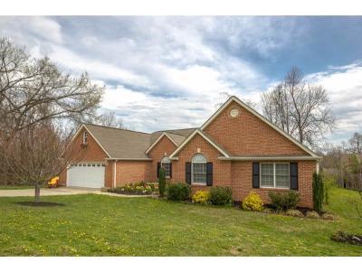 Johnson City Single Family Home For Sale: 623 Glen Oaks Pl