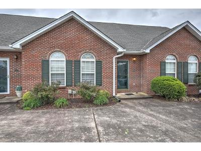 Blountville Condo/Townhouse For Sale: 132 Eagle View Pvt Dr #132