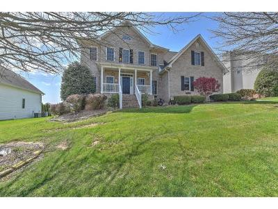 Johnson City Single Family Home For Sale: 105 Emerald Chase Circle