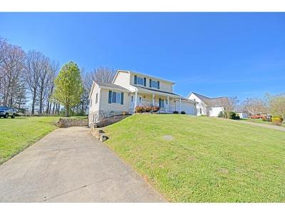Greeneville Single Family Home For Sale: 90 Colricia Dr