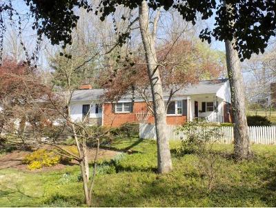 Johnson City Single Family Home For Sale: 1300 Lester Harris Road