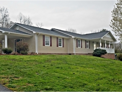 Elizabethton Single Family Home For Sale: 134 White Road