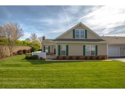 Johnson City Condo/Townhouse For Sale: 209 Avonlea Pl #209