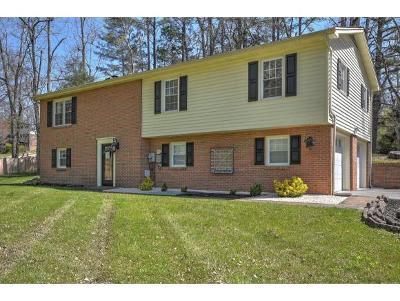 Bristol TN Single Family Home For Sale: $185,000