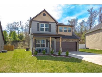 Johnson City Single Family Home For Sale: 1195 Hammett Road