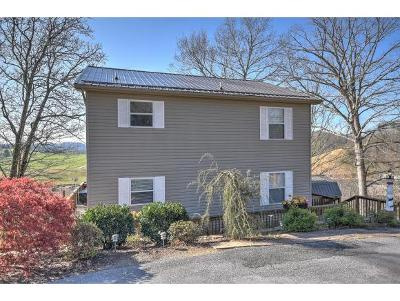 Bluff City Single Family Home For Sale: 395 Lakeshore Rd
