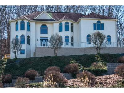 Abingdon Single Family Home For Sale: 19150 Sterling Dr.