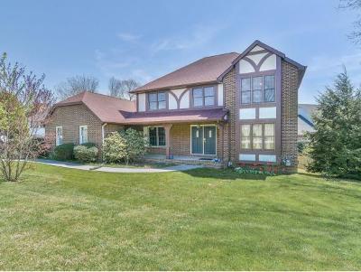 Johnson City Single Family Home For Sale: 1 Flo Ct.