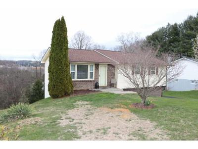Bristol VA Single Family Home For Sale: $122,900