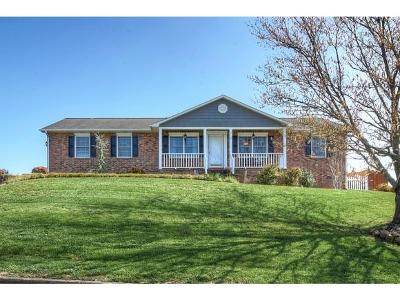 Johnson City Single Family Home For Sale: 304 Green Valley Drive