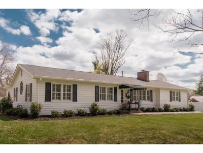 Bristol Single Family Home For Sale: 205 Sparger Road