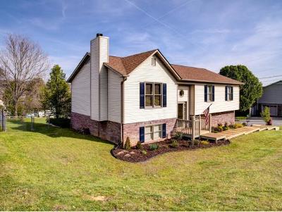 Johnson City Single Family Home For Sale: 605 Steeplechase Dr