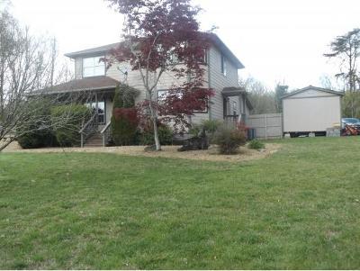 Rogersville Single Family Home For Sale: 124 Howard Elkins Rd