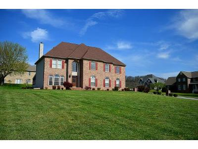 Johnson City Single Family Home For Sale: 101 Keeview Court
