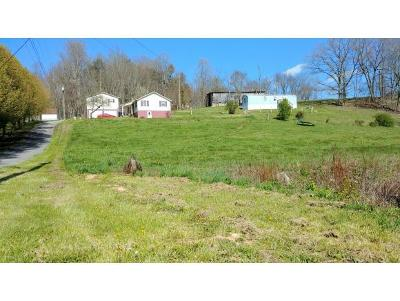 Damascus, Bristol, Bristol Va City Single Family Home For Sale: 8464 Dakin Dr