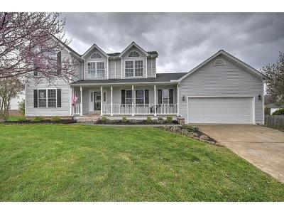 Bluff City Single Family Home For Sale: 312 Nicole Lane