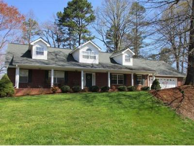 Johnson City Single Family Home For Sale: 108 Victor Drive