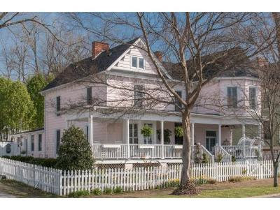 Abingdon Single Family Home For Sale: 255 W Valley