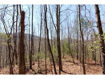 Residential Lots & Land For Sale: 7588 Roan Creek Road