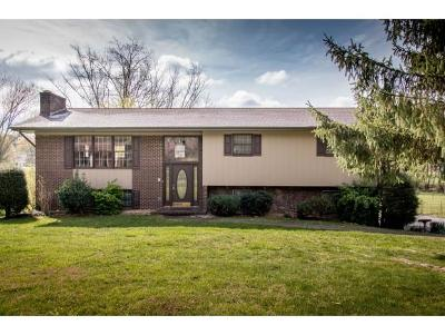 Bristol Single Family Home For Sale: 166 Freedom Road