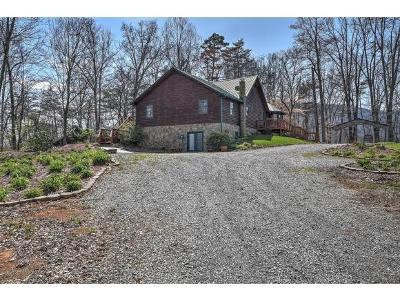 Johnson City Single Family Home For Sale: 131 Marguerite Lane