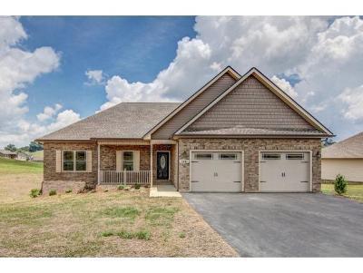 Jonesborough Single Family Home For Sale: 1341 Peaceful Dr