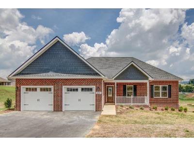 Jonesborough Single Family Home For Sale: 1317 Peaceful Dr