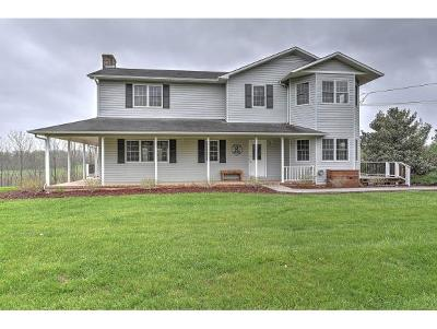 Jonesborough Single Family Home For Sale: 1778 Boones Creek Rd
