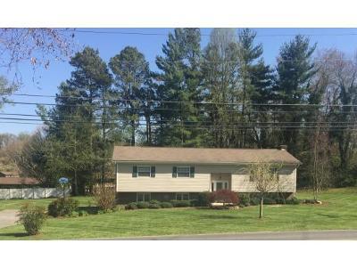 Kingsport Single Family Home For Sale: 969 Kendrick Creek Road