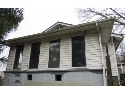 Bristol VA Single Family Home For Sale: $25,900
