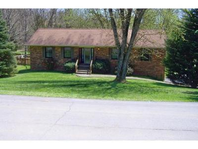 Johnson City Single Family Home For Sale: 143 Silver Maple Drive