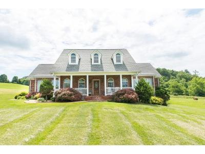 Bristol Single Family Home For Sale: 16996 Old Jonesboro