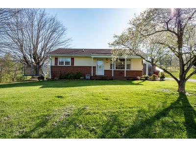 Johnson City Single Family Home For Sale: 1508 Squibb Drive